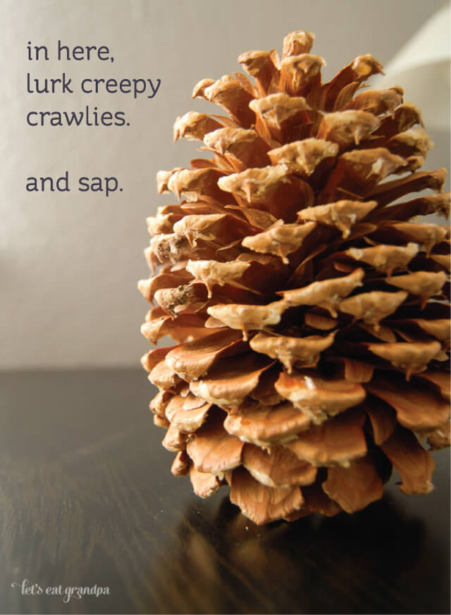 Baking your pine cones will kill creepy crawlies and harden the sap. Via Let's Eat Grandpa