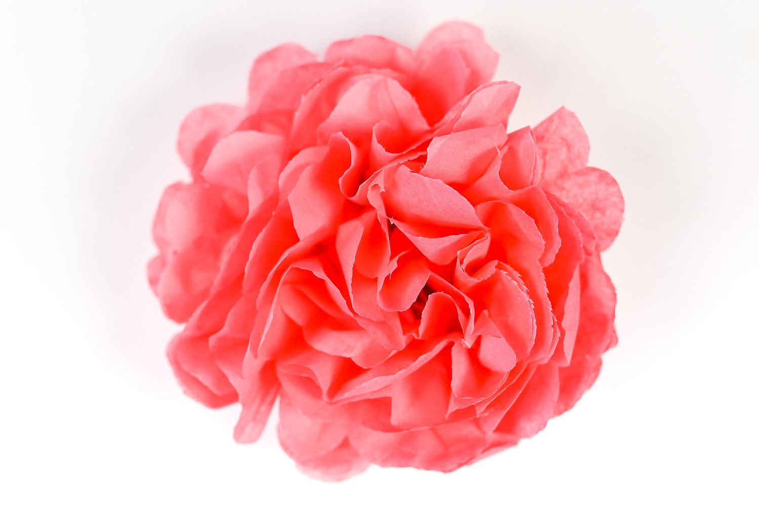 Finished Tissue paper flower to make a gorgeous event decor