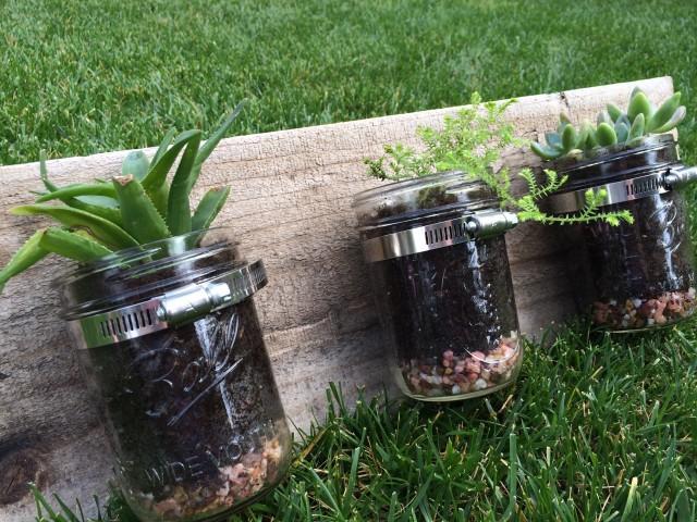 Wendy Nielson - Hanging Mason Jar Planter