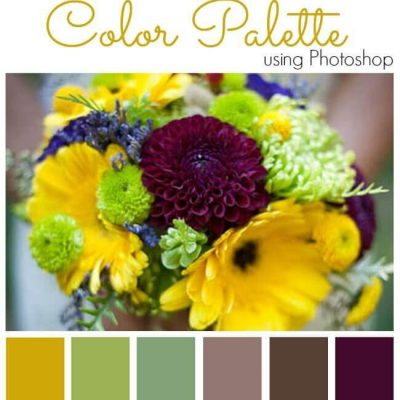 How to Create a Color Palette using Photoshop