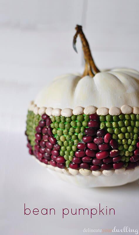 bean pumpkin 1