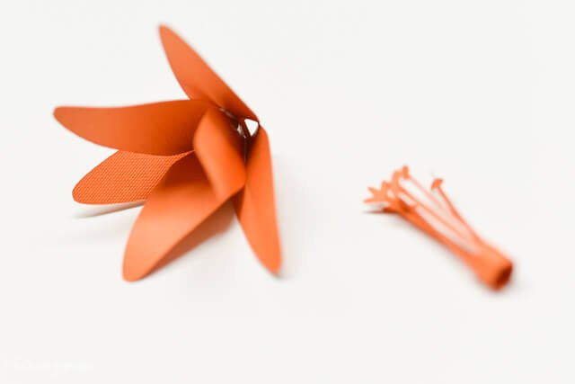 How to Assemble the Cricut Tiger Lily - How to Layer Petals