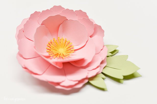 How to Make 3D Cricut Cardstock Flowers - Step by Step ...