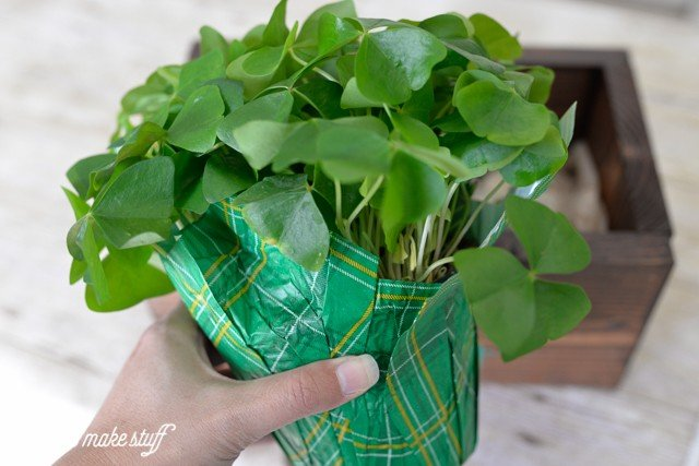 Are you feeling lucky? Find the four-leaf clover in this cute shamrock planter made with @elmersproducts! Such a fun St. Patrick's Day project.
