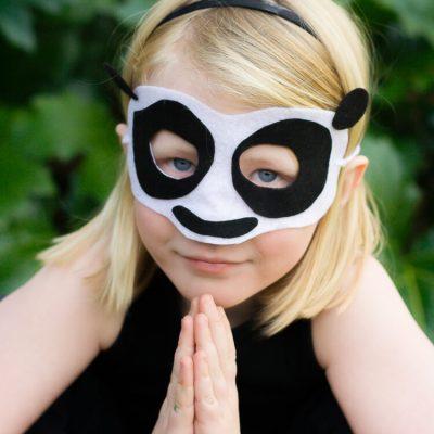 Kung Fu Panda Felt Masks
