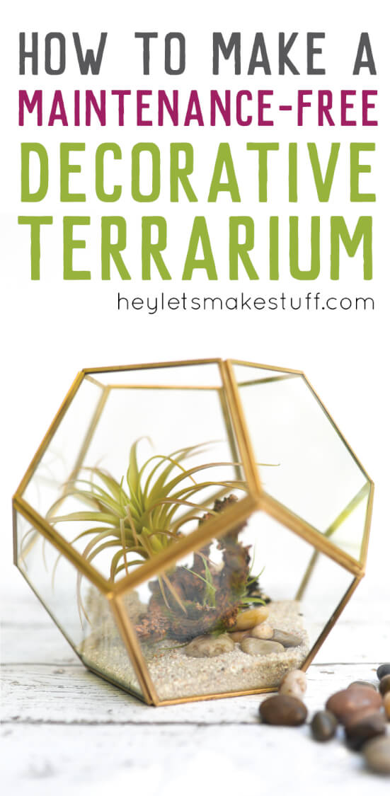 Create a maintenance-free DIY terrarium (with plants you can't kill!) that can be customized to your decor.