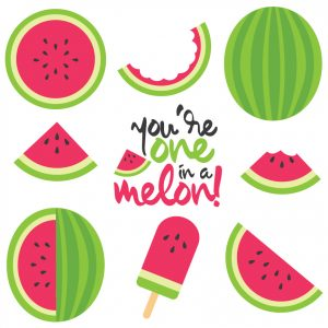 Celebrate summer with free watermelon SVG / DXF cut files and PNG clip art! Nine yummy designs for all of your summer projects.