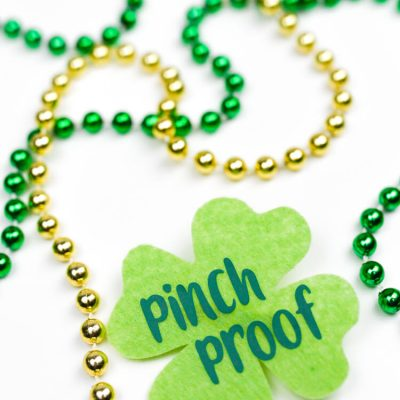 St. Patrick's Day Pinch Proof Pin