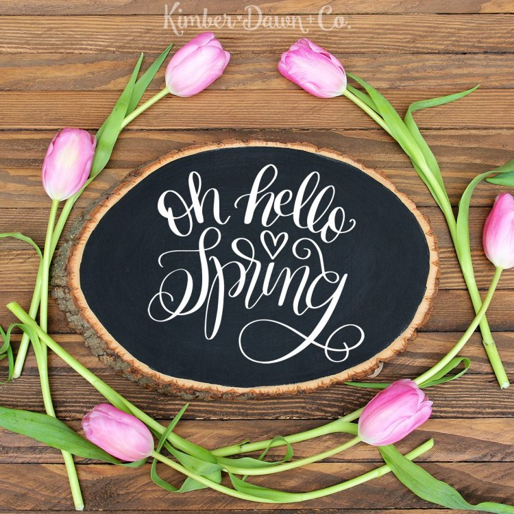 """""""Oh Hello Spring"""" I'm sharing my favorite FREE SVGs for Easter and spring! All the colors, designs, decor, and adorable characters you'll need for a fun and festive season."""