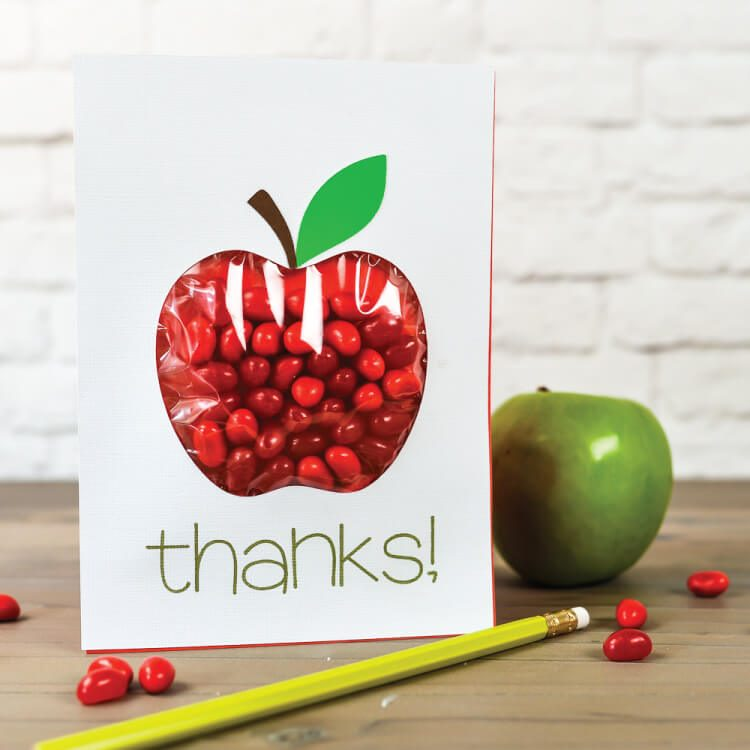 Apple Pouch Card