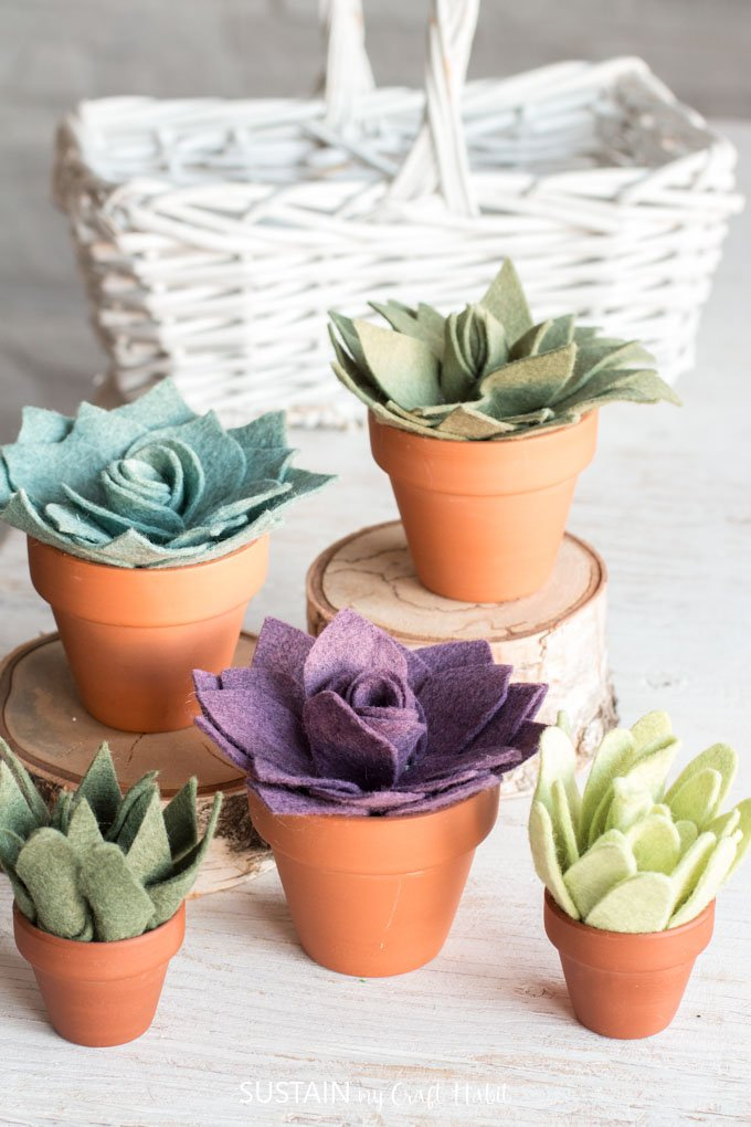 You don't need a green thumb to keep these potted felt succulents alive, you just need your Cricut. Sustainmycrafthabit.com walks you through how to make this lifelike craft.