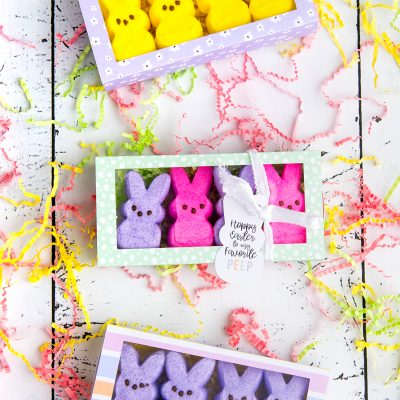 Peeps Easter Treat Box with the Cricut