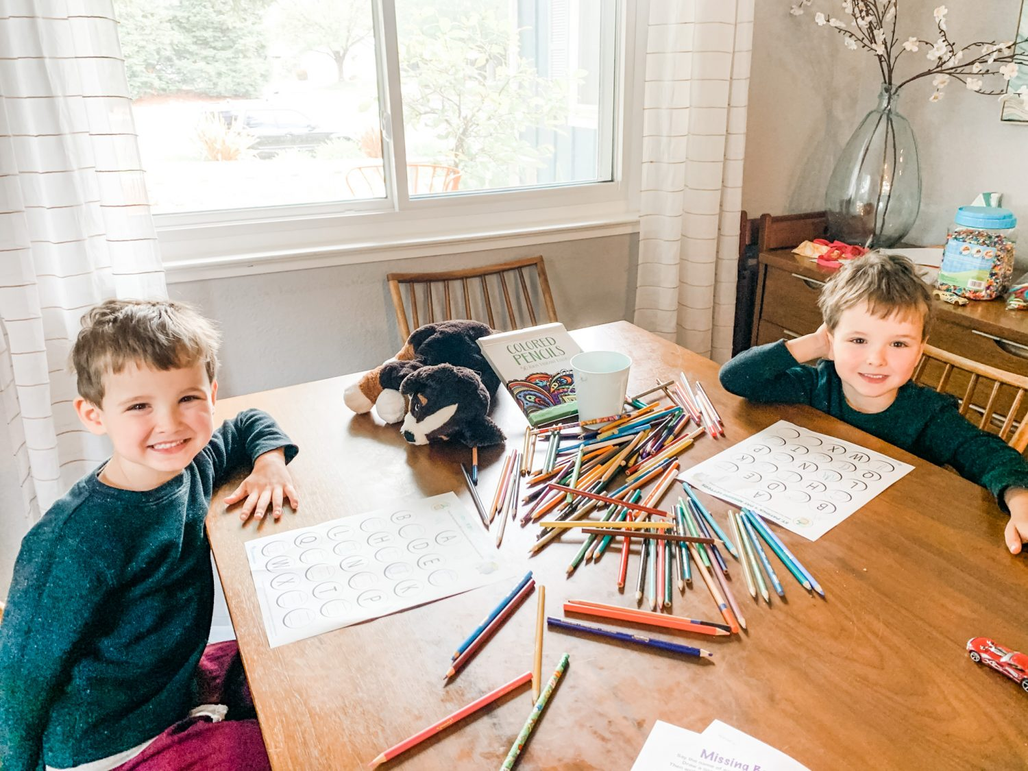 Boys at homeschooling table