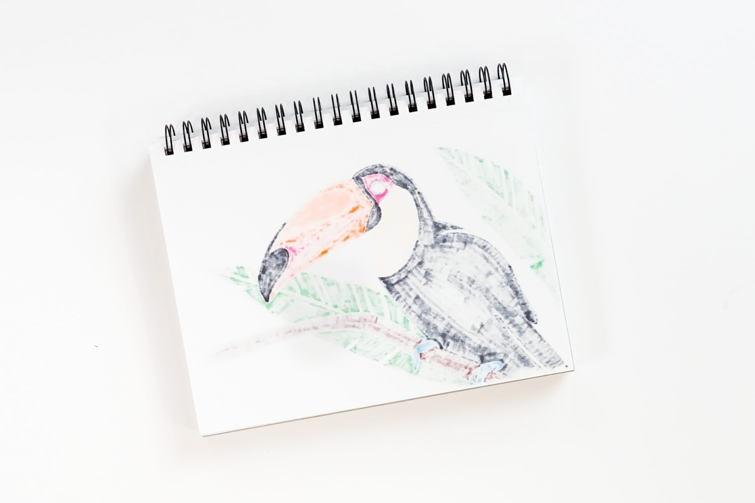 Back of toucan drawing showing bleed through