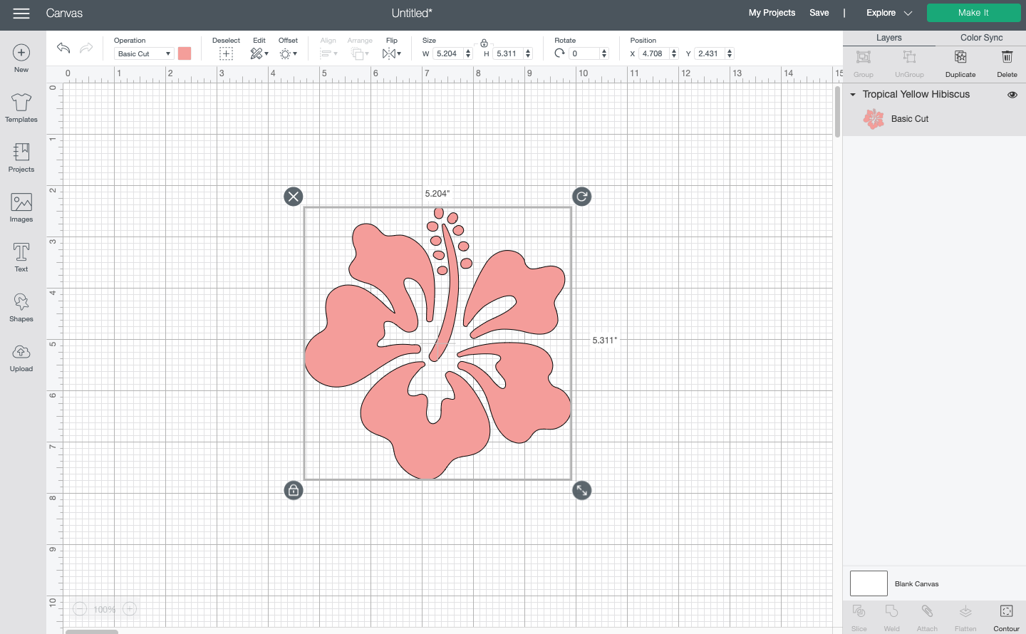 Cricut Design Space: Pink hibiscus image from the Cricut Image Library